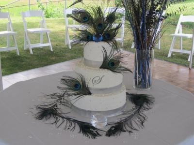 southwest-michigan-bridal-show-001